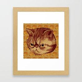 Fitzroy the Cat Framed Art Print