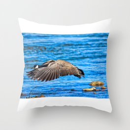 Flying 1X Throw Pillow