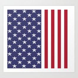 American Flag design Art Print