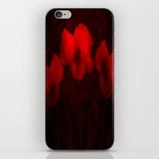 Poppies aglow iPhone & iPod Skin