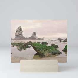 Haystack Rock Needles Cannon Beach Seastack Tidal Rocks Marine Garden Oregon Coast Northwest Mini Art Print