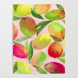 Mango Watercolor Painting Poster