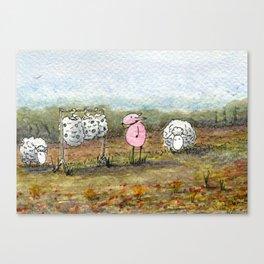 Skippy's Wardrobe Canvas Print