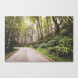 The Road to Olympia Canvas Print