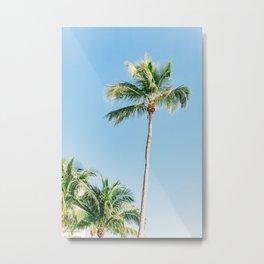 Naples Palms Metal Print