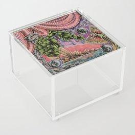 Fascination Acrylic Box