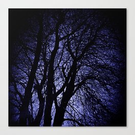 Barren Tree Branches Canvas Print