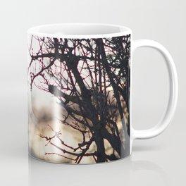 Sunset through trees Coffee Mug