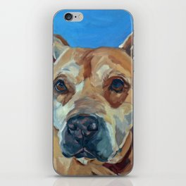 Happy the Bully Dog Portrait iPhone Skin