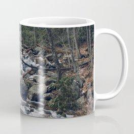 Frozen Stream From Mountain High Coffee Mug