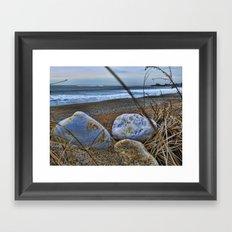 Shells and Beach Stones Framed Art Print