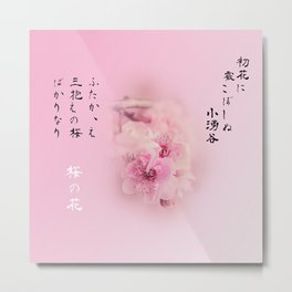 Cherry Blossom Poems Pink Version Metal Print