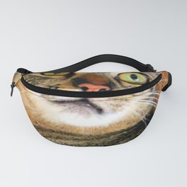 I'm Ready For My Close-up... Fanny Pack