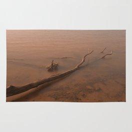 Misty Chesapeake Bay Rug