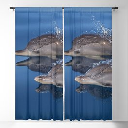 Beautiful Spotted dolphins Stenella frontalis Blackout Curtain