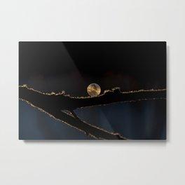 Captured Gold Light  Metal Print