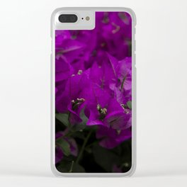 Bougainvillea. Flowers in the garden. Clear iPhone Case