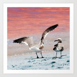 seagull wings Art Print