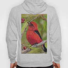Raspberries Red Bird Nature Art Scarlet Tanager by Laurie Leigh Hoody