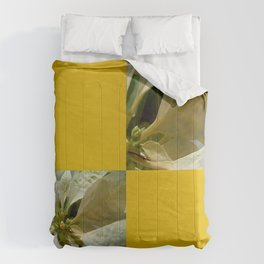 Pale Yellow Poinsettia 1 Blank Q7F0 Comforters