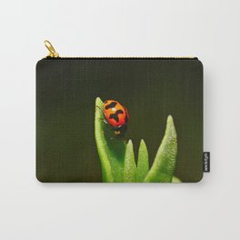 An Orange Ladybird Walking Down A Pointy Succulent Carry-All Pouch