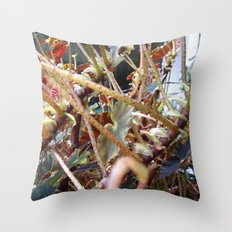 Dragon Fight    [PLANTS]   [VINES] Throw Pillow