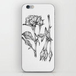 Roses 2 iPhone Skin