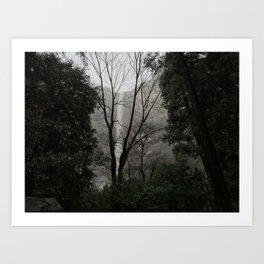 Winter Tree and Bridalveil Fall Art Print