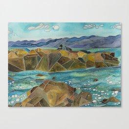La Jolla Sea Lions Canvas Print