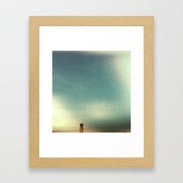 vaux swifts Framed Art Print