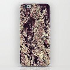 Tree Bark 2.0 iPhone Skin