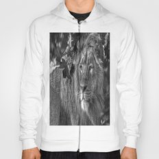 On the look out. Hoody