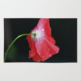 Poppy With Dew Rug