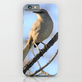 Mockingbird - I Finally Found You by Reay of Light iPhone Case