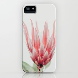 King Protea flower iPhone Case