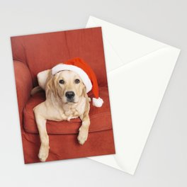 Dog with Christmas hat on armchair Stationery Cards