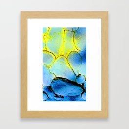 Water Cells with stones Framed Art Print