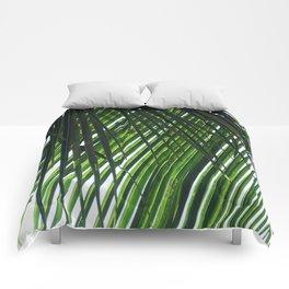 Palm in Las Palmas Comforters