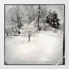Snowy Elegance Canvas Print