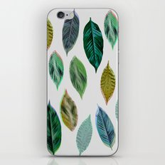 Green Leaves 2 iPhone & iPod Skin