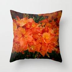 Give me an Orange, Julius Throw Pillow