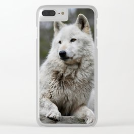 Alawa Rests on a Rock Clear iPhone Case