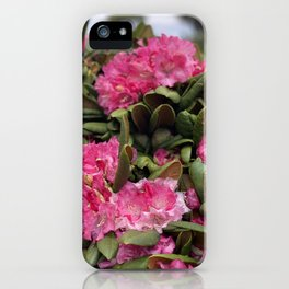 Delight To The Eye iPhone Case