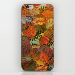 Autumn in the Forest iPhone Skin