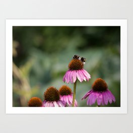 Bee Friends Art Print