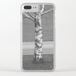 Birch Tree 2 Clear iPhone Case