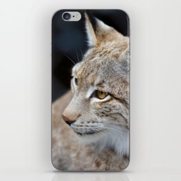 Young lynx close-up portrait iPhone Skin