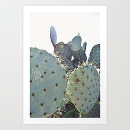 A Cactus Kind of Green Art Print