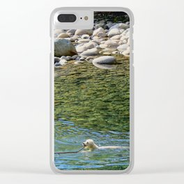 Mountain Dog Clear iPhone Case