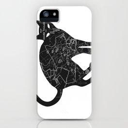 A Familiar Black Cat iPhone Case
